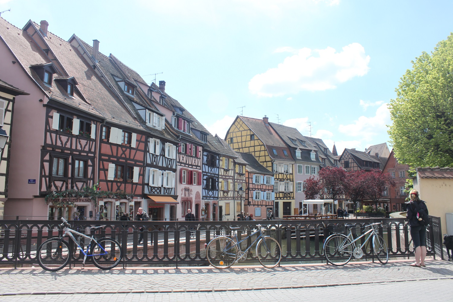 Highlight: Colmar