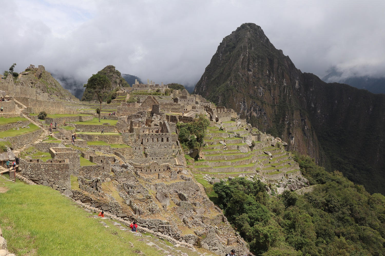 Highlight: Machu Picchu