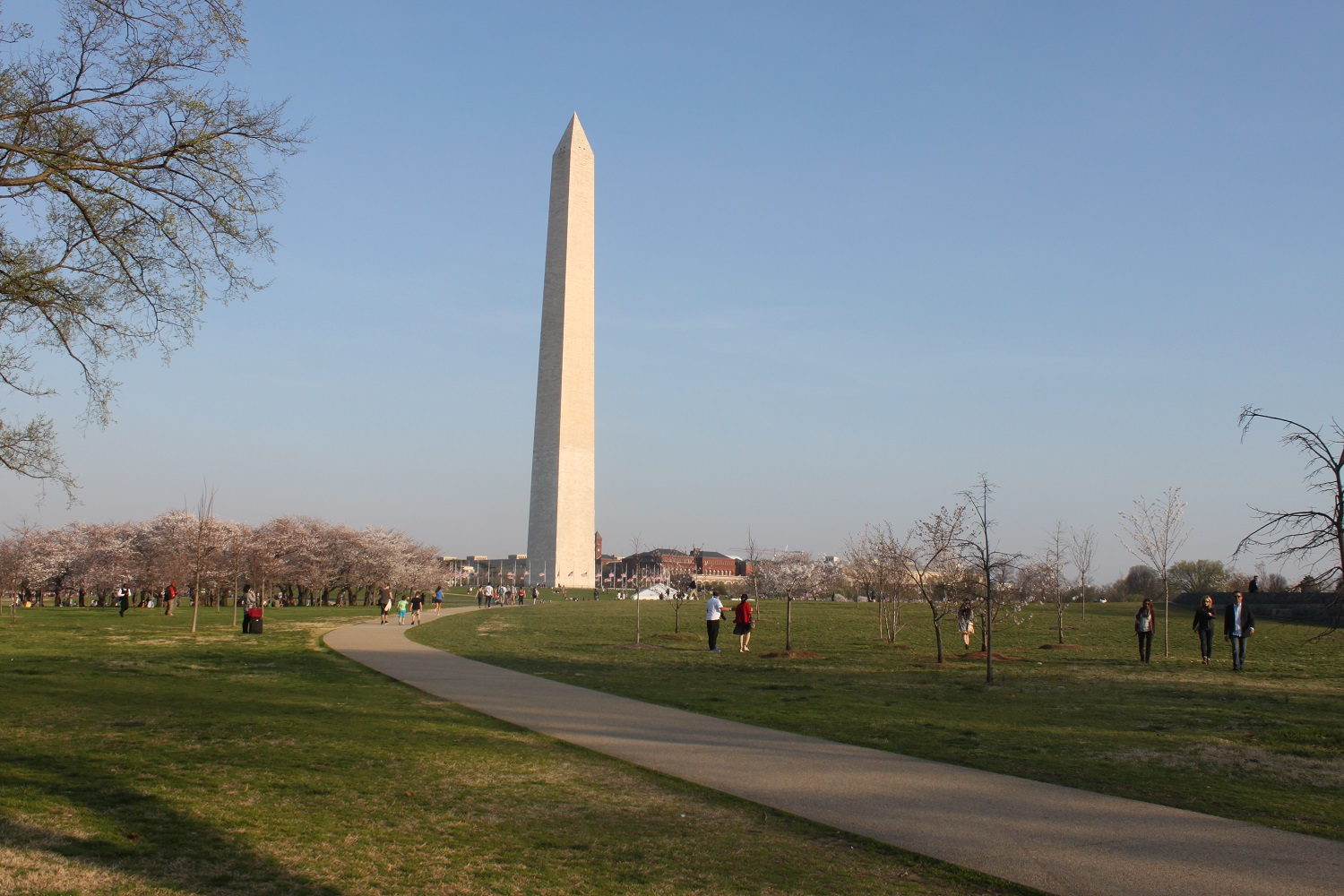 51+ Things to Do in Washington, DC