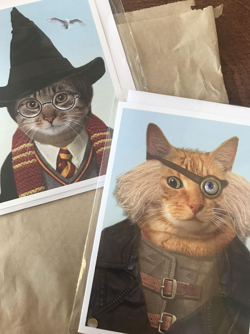Harry Potter as a Cat