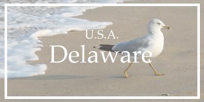 /Delaware