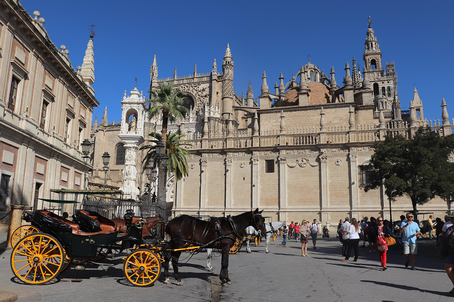31+ Things to Do in Seville